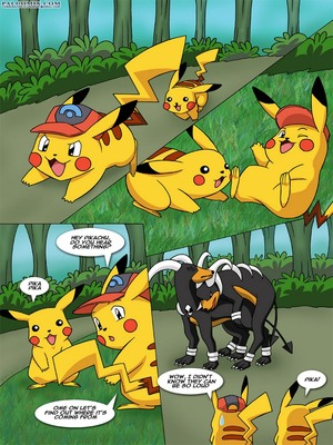 The New Adventures Of Ashchu 1 3 and Pokemon Comic Porn